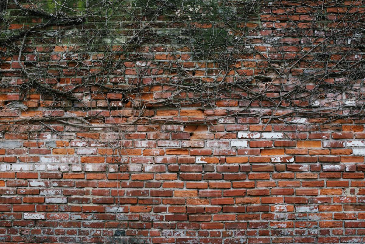 Fasadgruppen